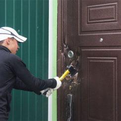 Входные китайские двери