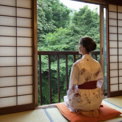Раздвижные двери в японском стиле